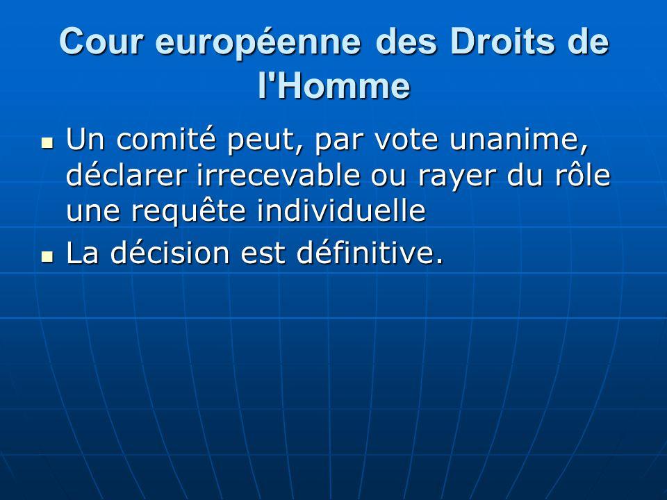 Cour européenne des Droits de l Homme