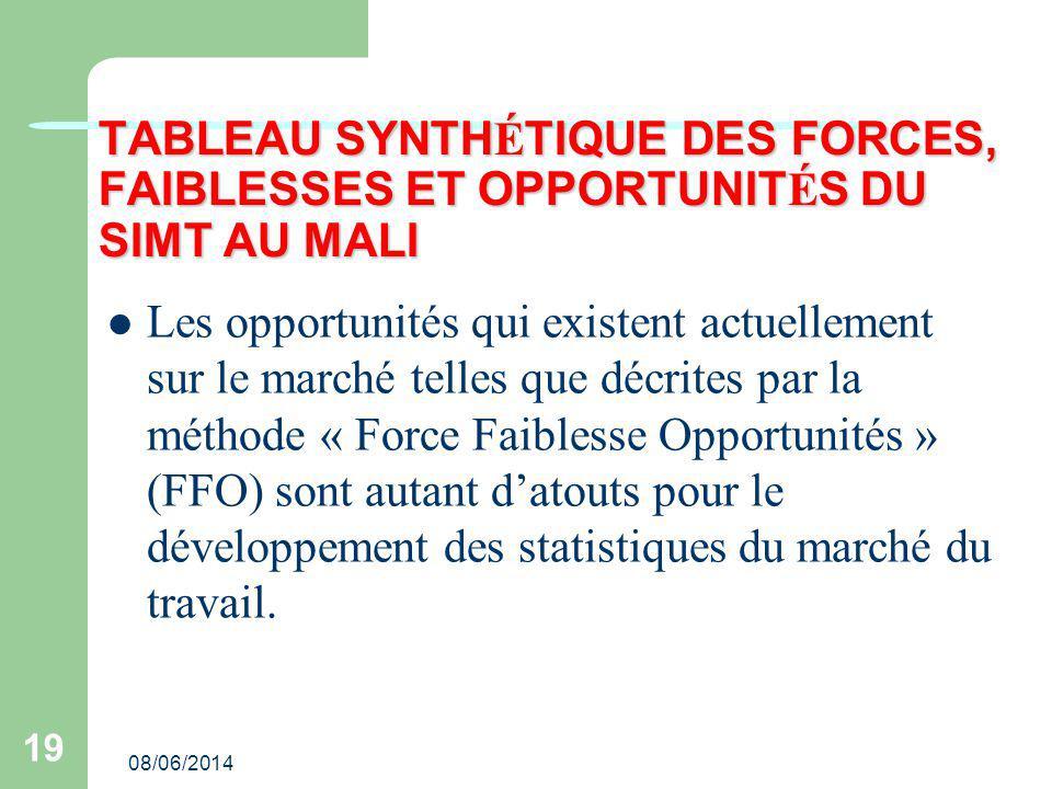 TABLEAU SYNTHÉTIQUE DES FORCES, FAIBLESSES ET OPPORTUNITÉS DU SIMT AU MALI