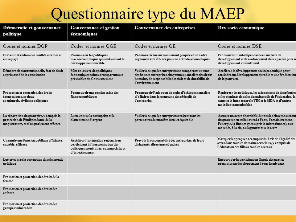 Questionnaire type du MAEP