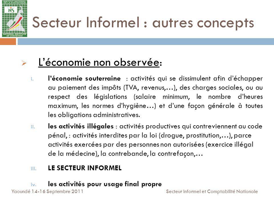 Secteur Informel : autres concepts