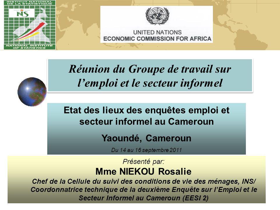 Réunion du Groupe de travail sur l'emploi et le secteur informel