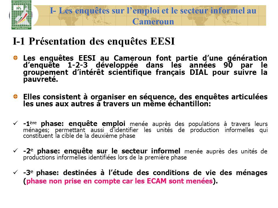 I- Les enquêtes sur l'emploi et le secteur informel au Cameroun
