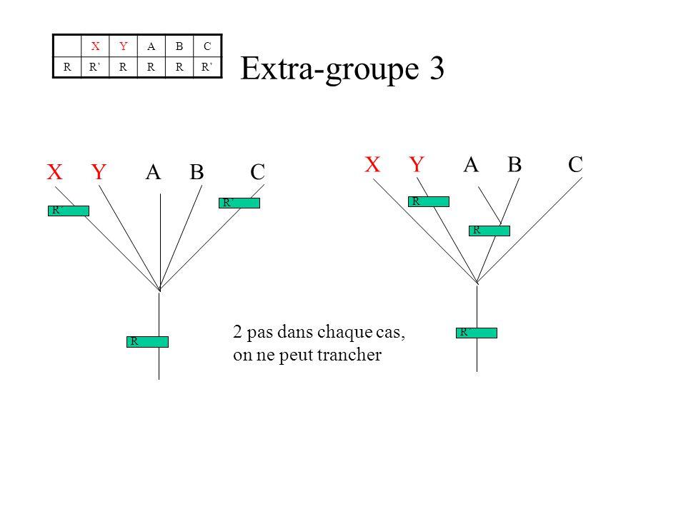 Extra-groupe 3 X Y A B C X Y A B C 2 pas dans chaque cas,