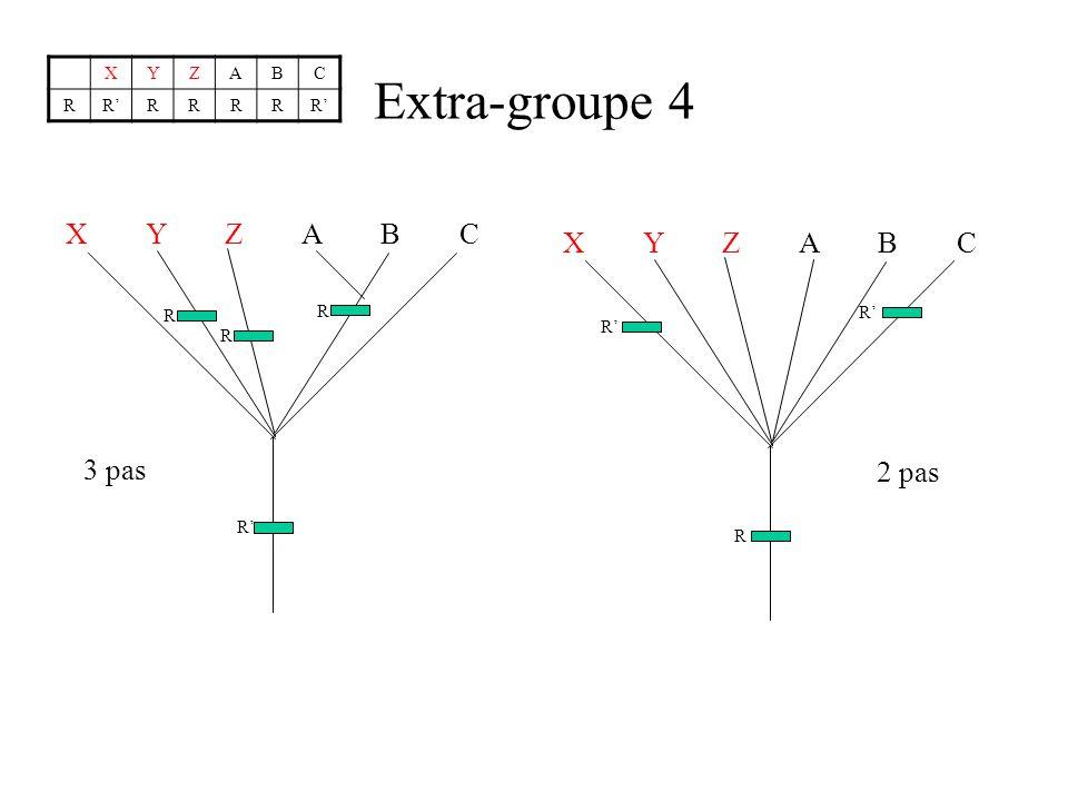 Extra-groupe 4 X Y Z A B C X Y Z A B C 3 pas 2 pas X Y Z A B C R R' R