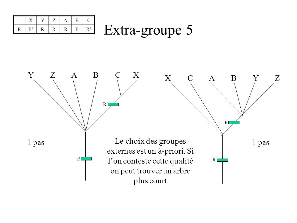 Extra-groupe 5 Y Z A B C X X C A B Y Z 1 pas