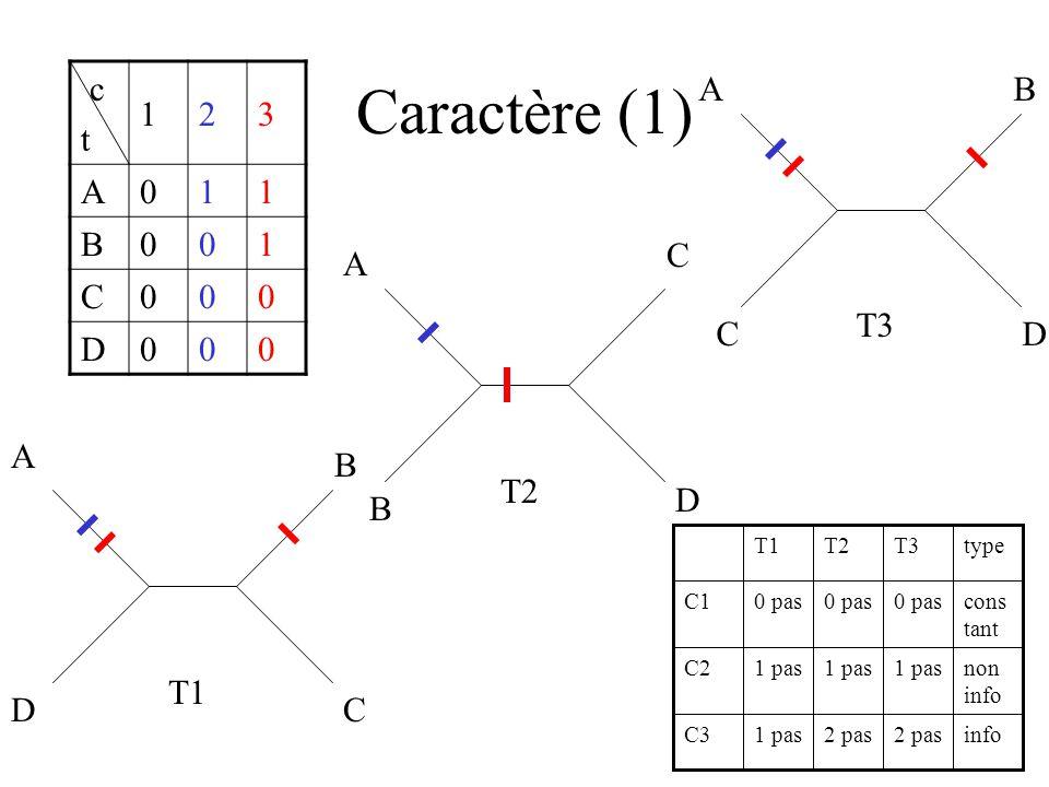 Caractère (1) c t 1 2 3 A B C D A D B C T3 A B C D T2 A B C D T1 type
