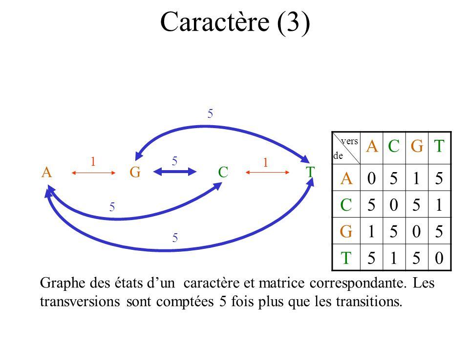 Caractère (3) 5. vers. de. A. C. G. T. 5. 1. 1. A. G. C. T.