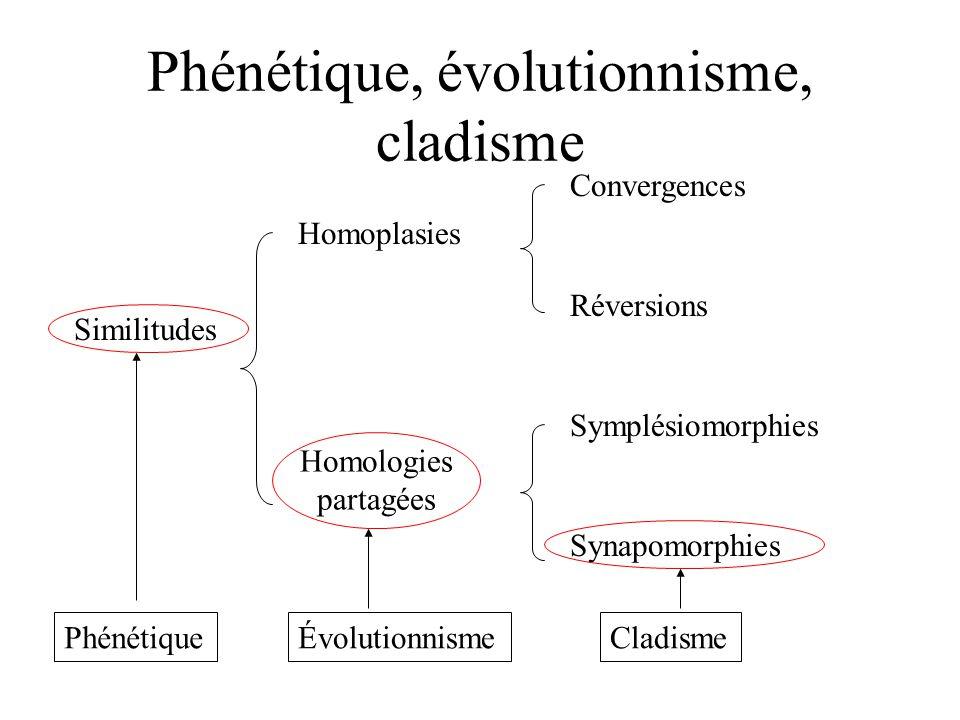 Phénétique, évolutionnisme, cladisme