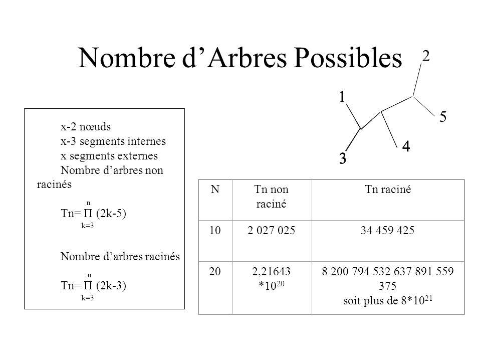 Nombre d'Arbres Possibles