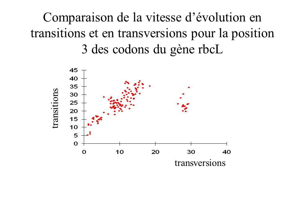 Comparaison de la vitesse d'évolution en transitions et en transversions pour la position 3 des codons du gène rbcL