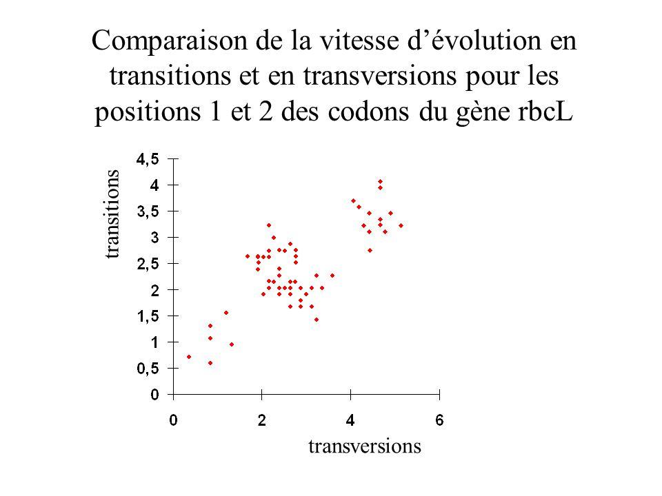Comparaison de la vitesse d'évolution en transitions et en transversions pour les positions 1 et 2 des codons du gène rbcL