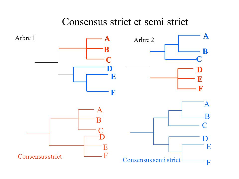 Consensus strict et semi strict