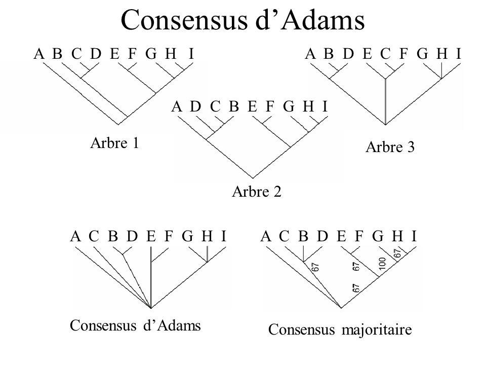 Consensus d'Adams A B C D E F G H I Arbre 1 Arbre 3 A B D E C F G H I