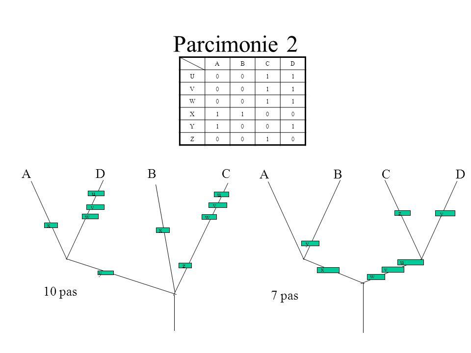 Parcimonie 2 A D B C A B C D 10 pas 7 pas A B C D U 1 V W X Y Z u u v