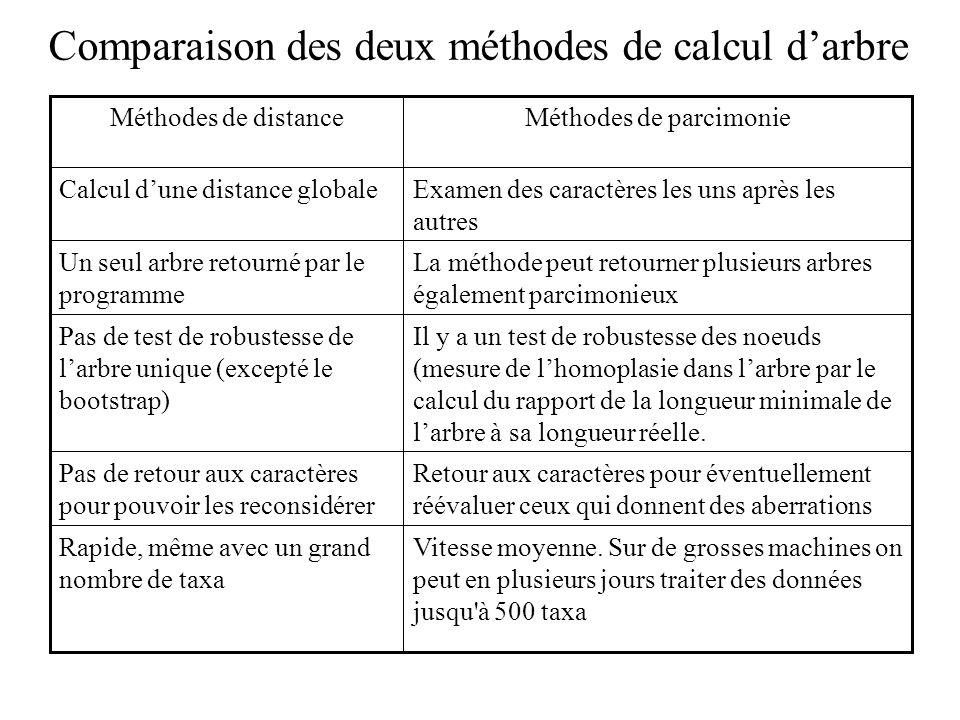 Comparaison des deux méthodes de calcul d'arbre