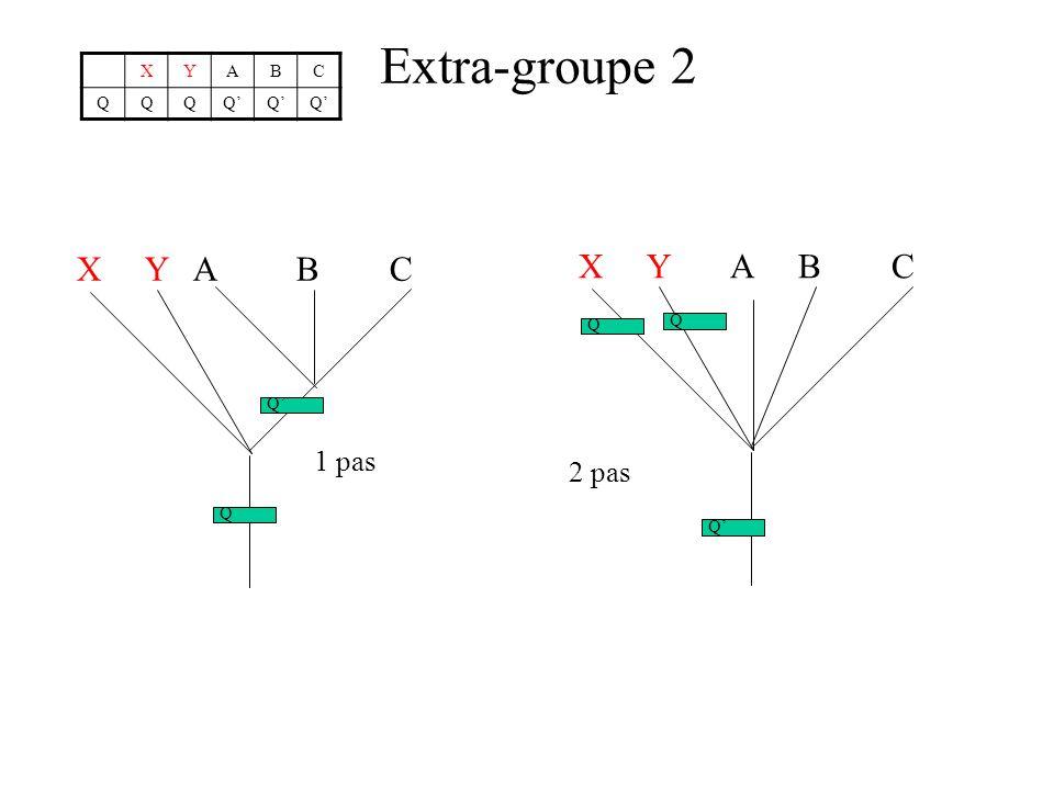 Extra-groupe 2 X Y A B C X Y A B C 1 pas 2 pas X Y A B C Q Q' Q Q Q' Q