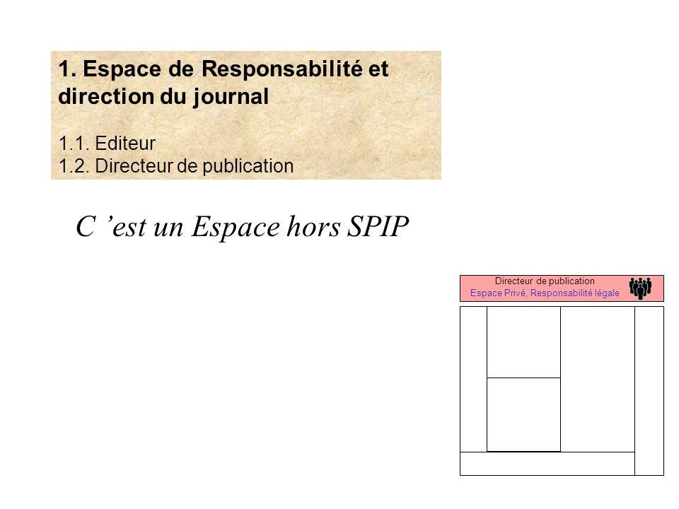 Directeur de publication Espace Privé, Responsabilité légale