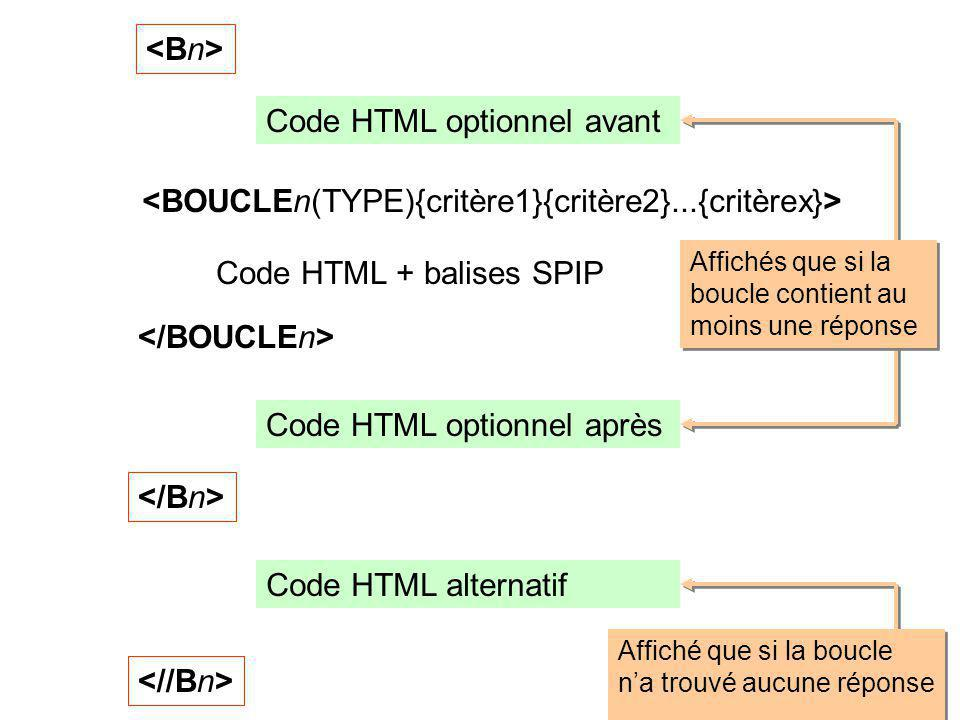 Code HTML optionnel avant