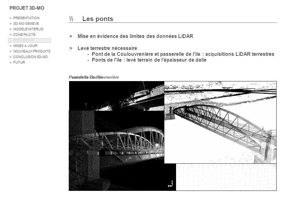 \\ Les ponts > Mise en évidence des limites des données LiDAR