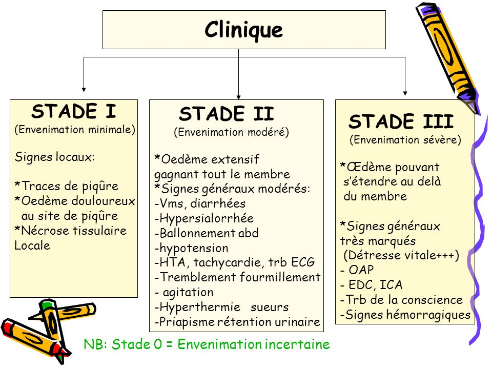 NB: Stade 0 = Envenimation incertaine