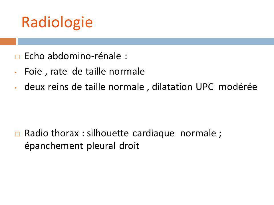 Radiologie Echo abdomino-rénale : Foie , rate de taille normale