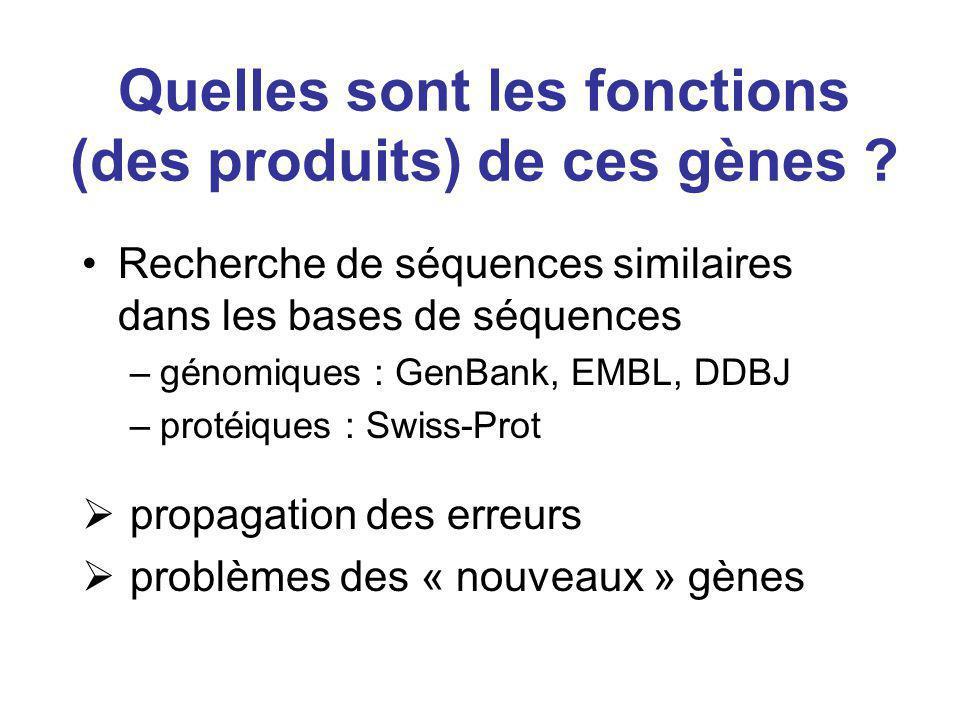 Quelles sont les fonctions (des produits) de ces gènes