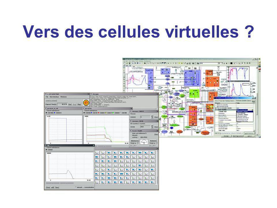 Vers des cellules virtuelles