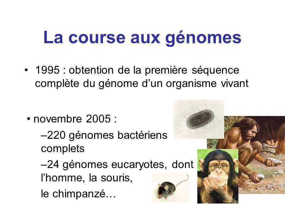 La course aux génomes 1995 : obtention de la première séquence complète du génome d'un organisme vivant.