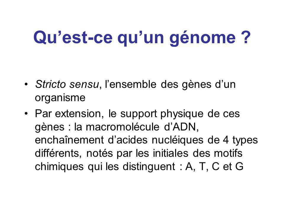 Qu'est-ce qu'un génome