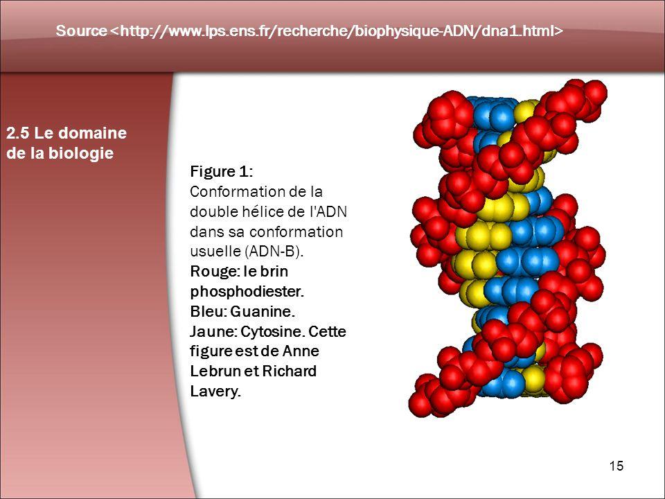 Source <http://www. lps. ens. fr/recherche/biophysique-ADN/dna1