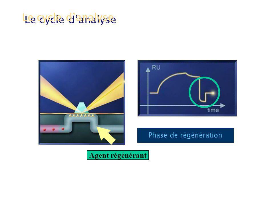 Le cycle d'analyse Agent régénérant Phase de régénération