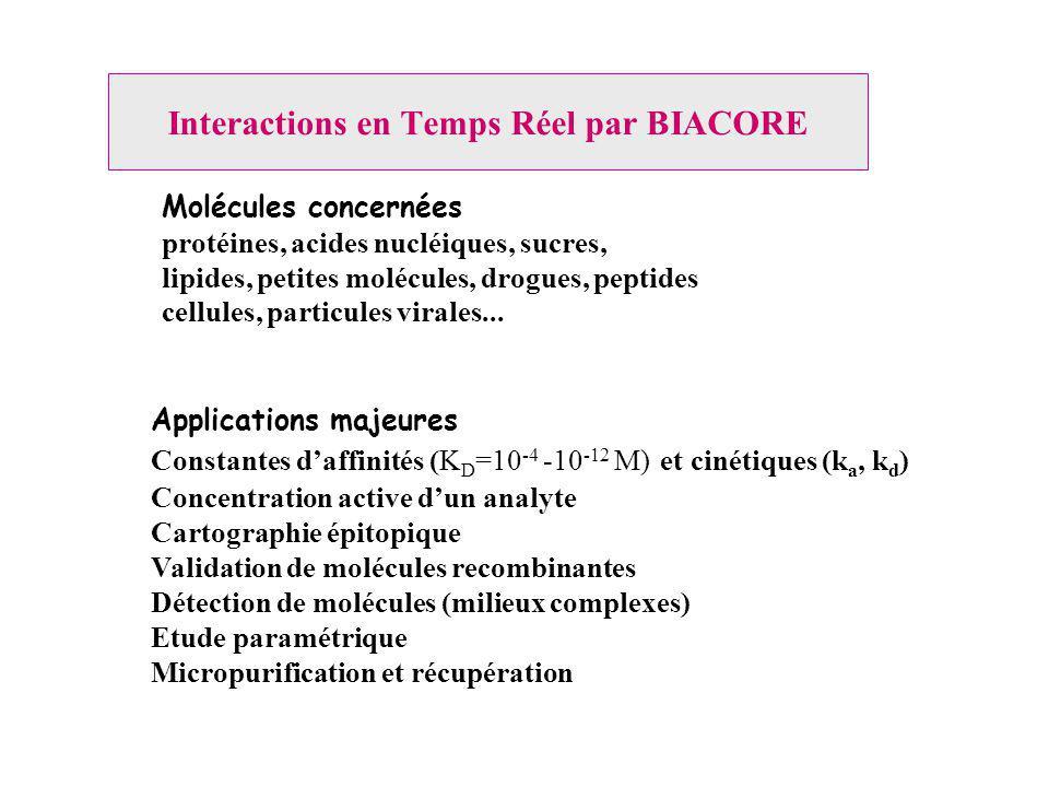 Interactions en Temps Réel par BIACORE