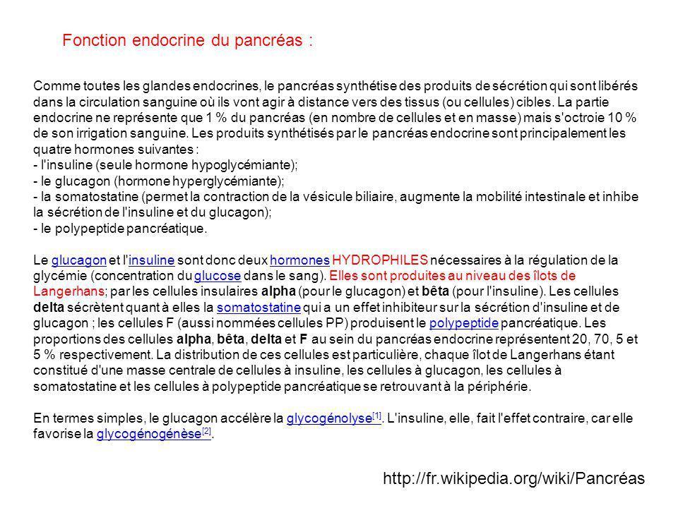 Fonction endocrine du pancréas :