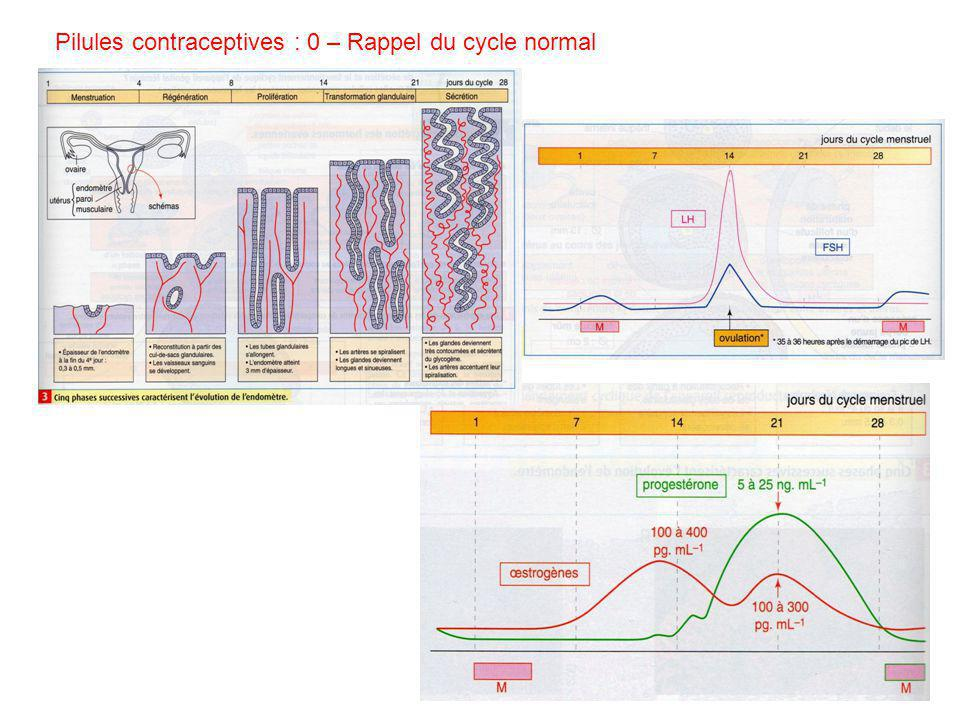 Pilules contraceptives : 0 – Rappel du cycle normal