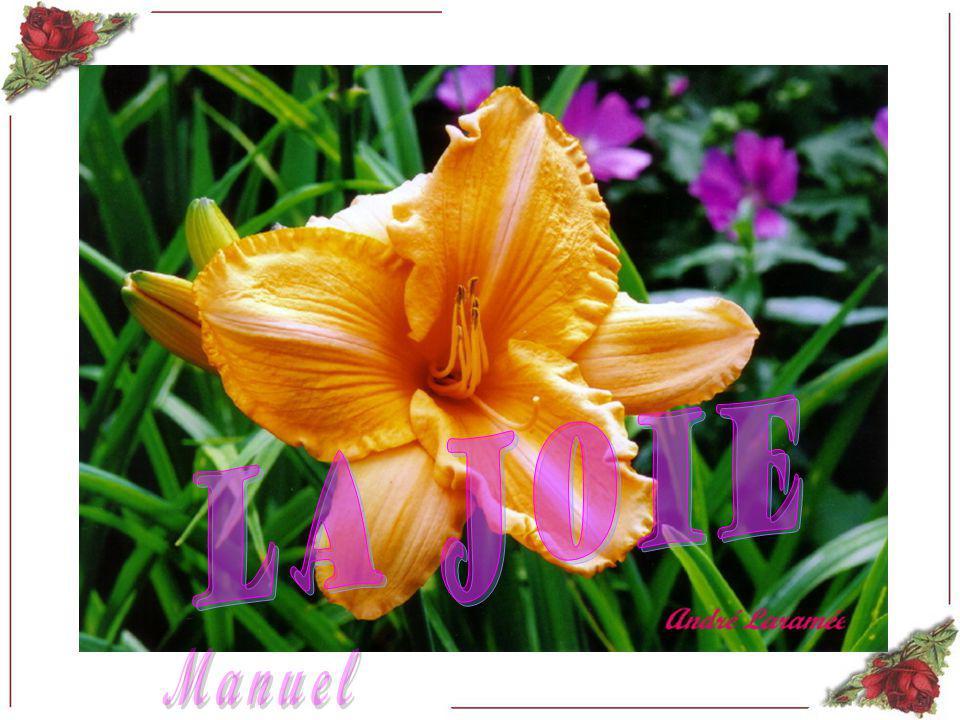 La joie Manuel