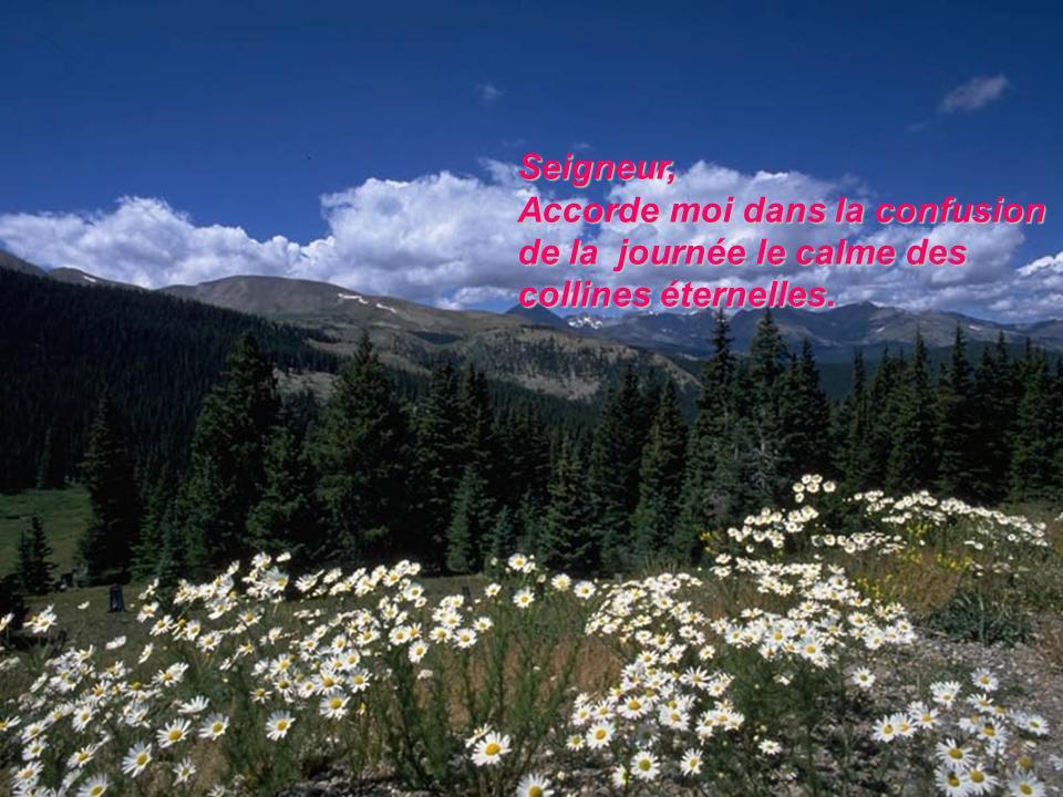 Seigneur, Accorde moi dans la confusion de la journée le calme des collines éternelles.