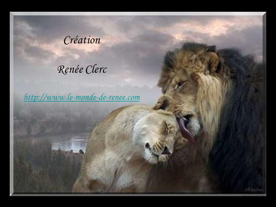 Création Renée Clerc http://www.le-monde-de-renee.com