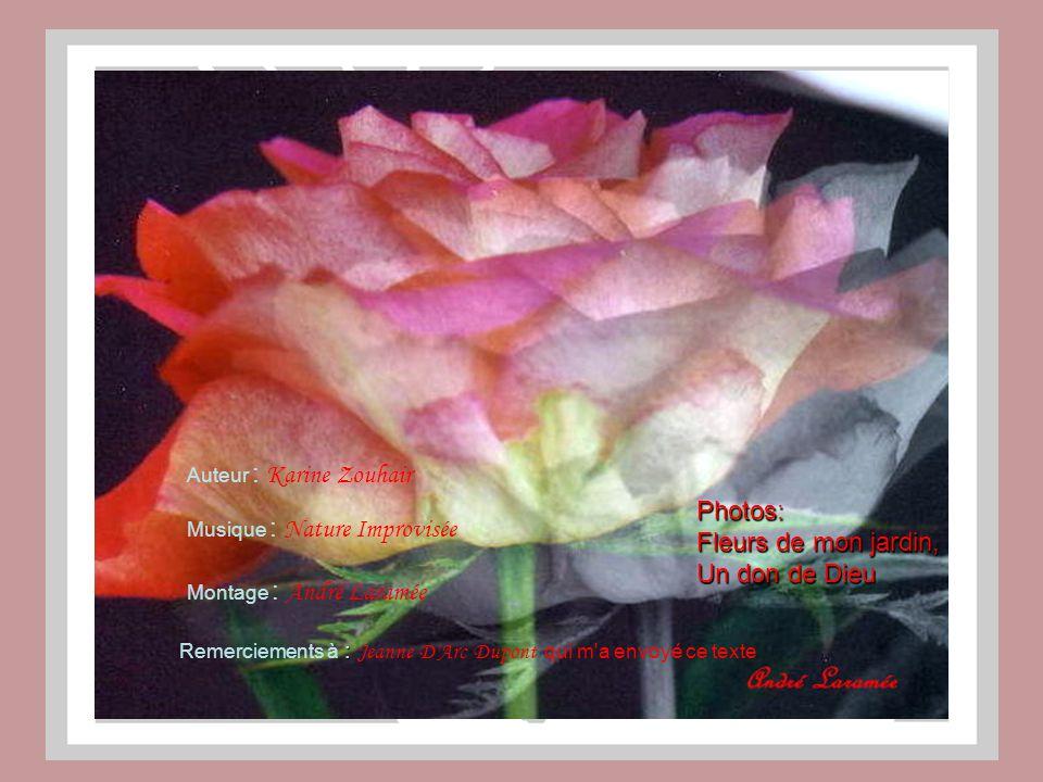 Photos: Fleurs de mon jardin, Un don de Dieu Auteur : Karine Zouhair