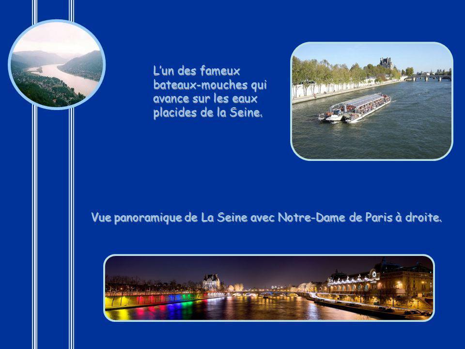 L'un des fameux bateaux-mouches qui avance sur les eaux placides de la Seine.