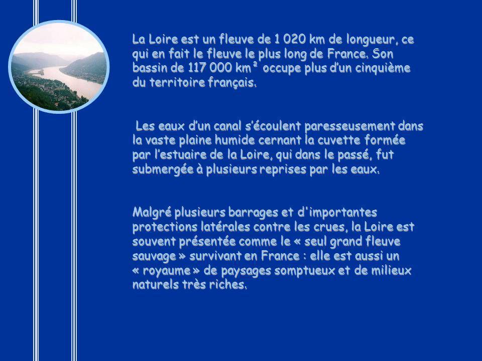 La Loire est un fleuve de 1 020 km de longueur, ce qui en fait le fleuve le plus long de France. Son bassin de 117 000 km² occupe plus d'un cinquième du territoire français.