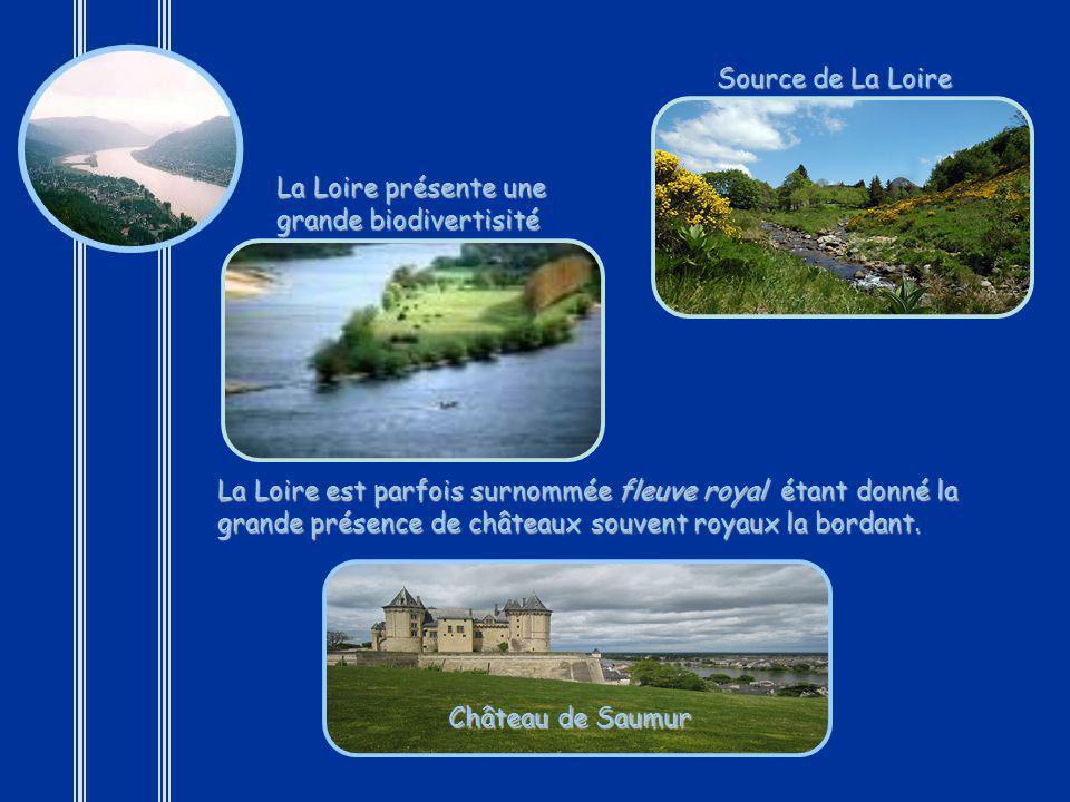 Source de La Loire La Loire présente une grande biodivertisité.