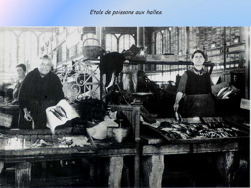 Etals de poissons aux halles.