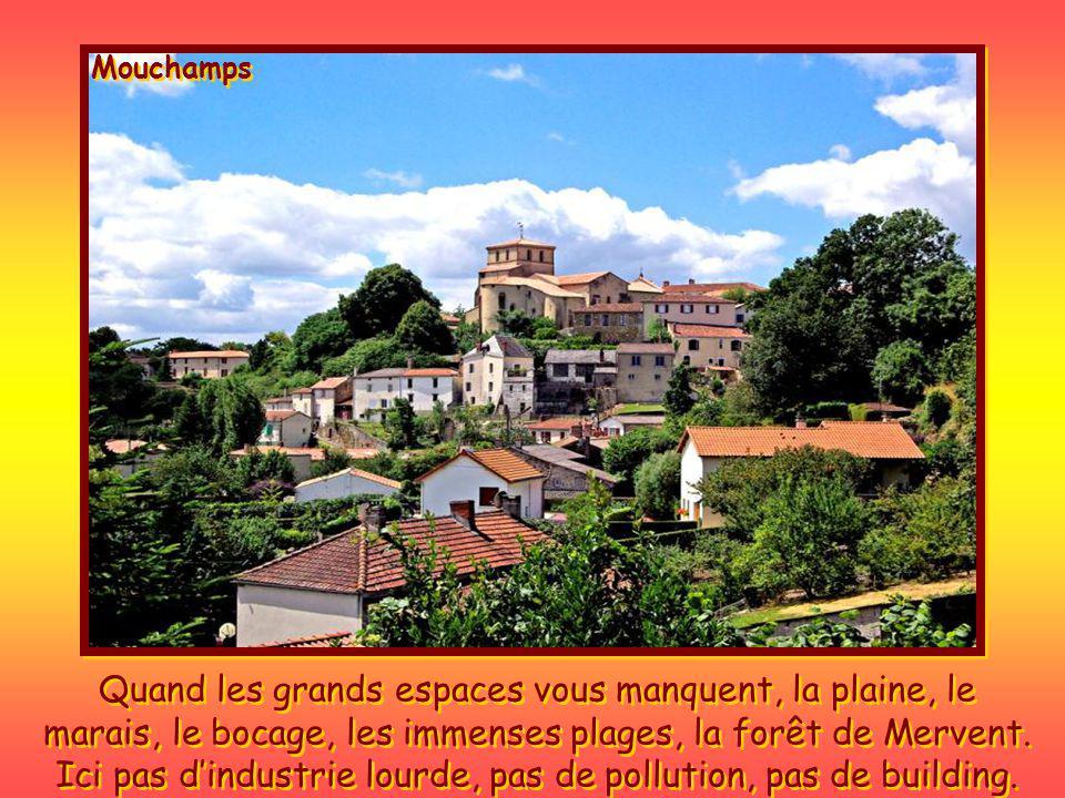 Mouchamps