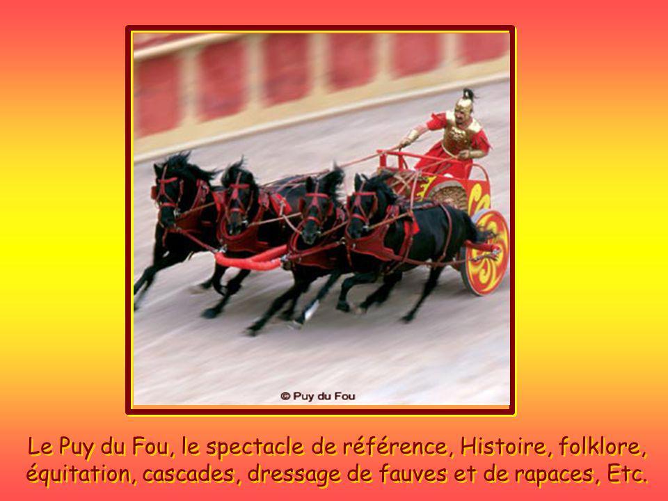 Le Puy du Fou, le spectacle de référence, Histoire, folklore, équitation, cascades, dressage de fauves et de rapaces, Etc.