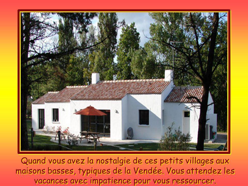 Quand vous avez la nostalgie de ces petits villages aux maisons basses, typiques de la Vendée.