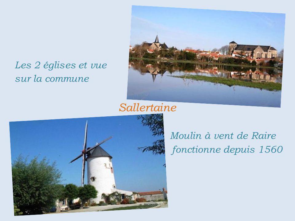 Sallertaine . . Moulin à vent de Raire . fonctionne depuis 1560