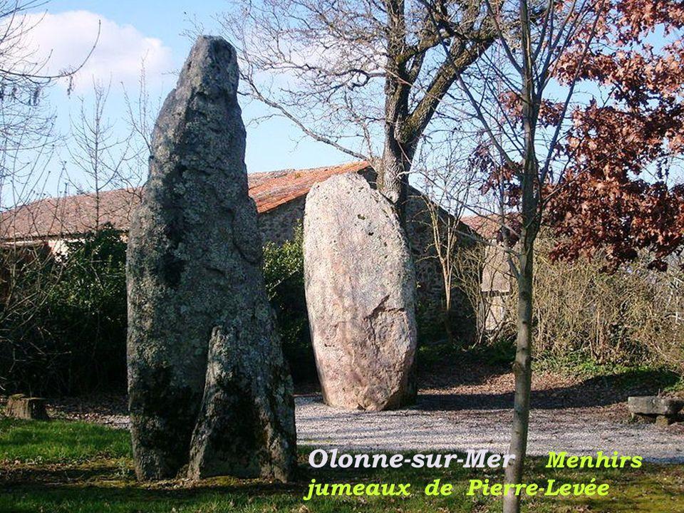 Olonne-sur-Mer Menhirs jumeaux de Pierre-Levée