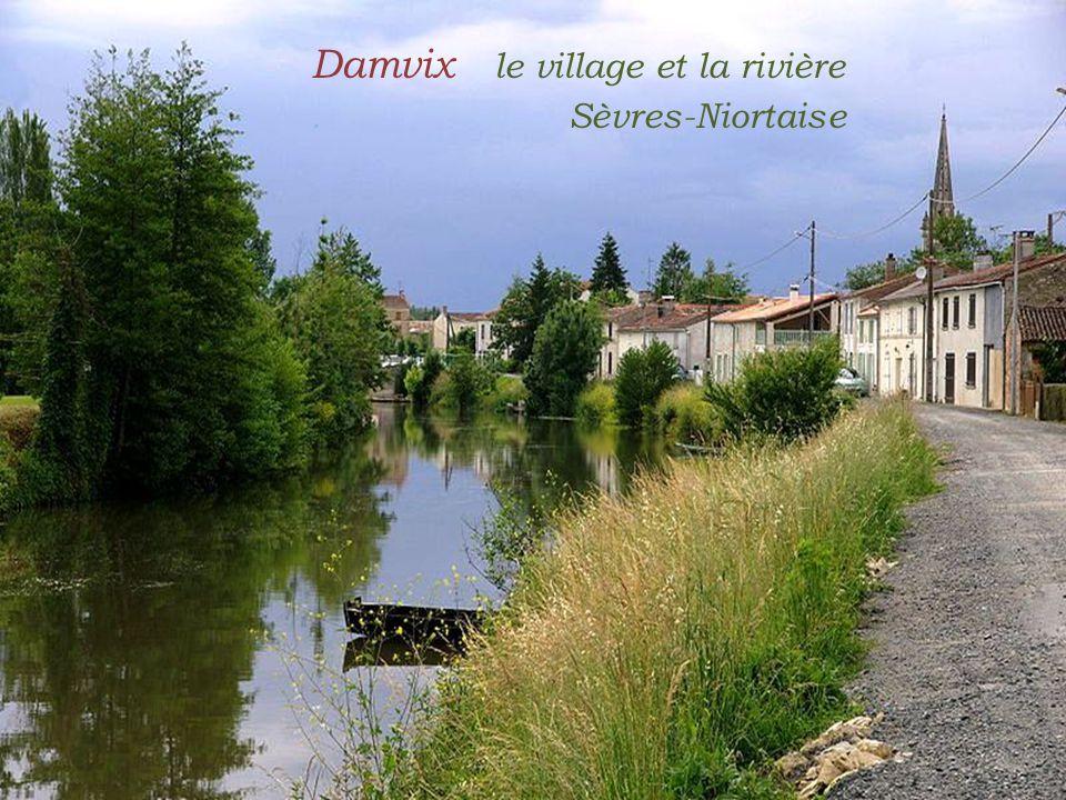Damvix le village et la rivière . Sèvres-Niortaise