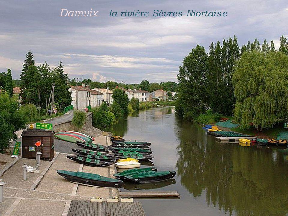 Damvix la rivière Sèvres-Niortaise
