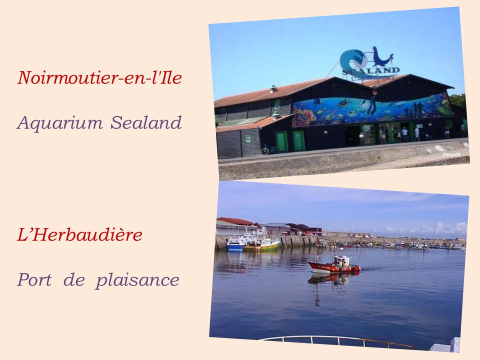 Noirmoutier-en-l Ile . Aquarium Sealand .
